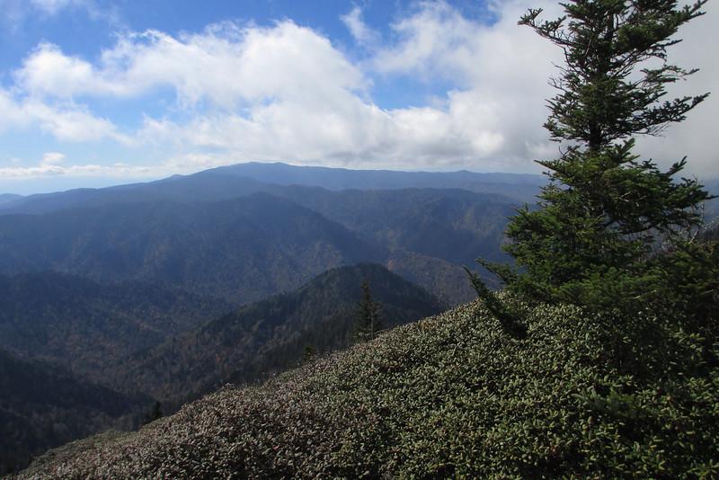 Mount LeConte via Alum Cave (10-21-14)