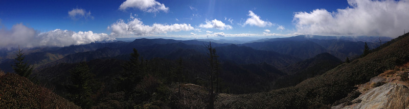 <b>6,450'</b> - <b>Myrtle Point</b> - The sweeping panorama to the south and southeast from Myrtle Point.  Clingmans Dome (6,644') still defiantly hides its summit in the clouds to the far right, Anakeesta Ridge's jagged profile lies below to the right of the scrubby spruce in the center, and the wild interior of the eastern Smoky Mountain Range extends out to the left...