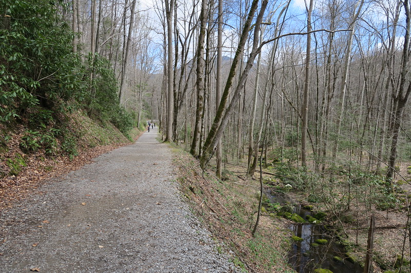 Porter's Creek Trail