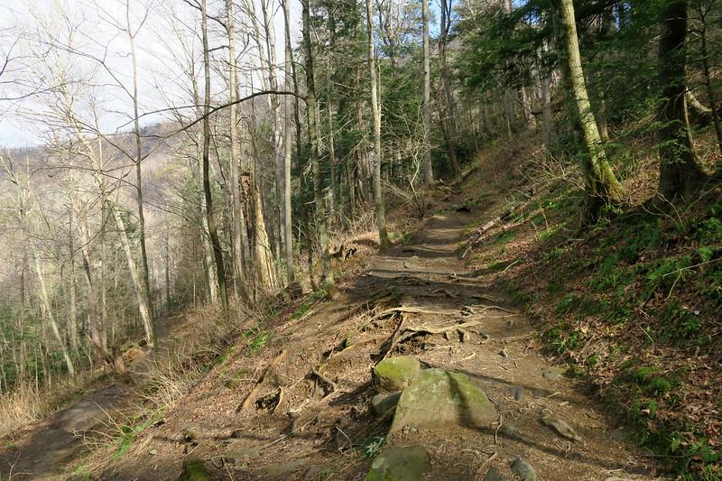 Rainbow Falls Trail -- 3,850'