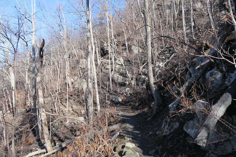 Rainbow Falls Trail -- 3,550'