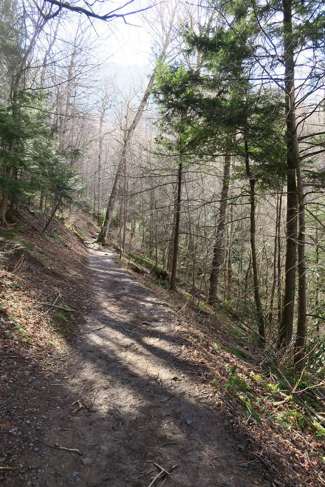 Rainbow Falls Trail -- 3,840'