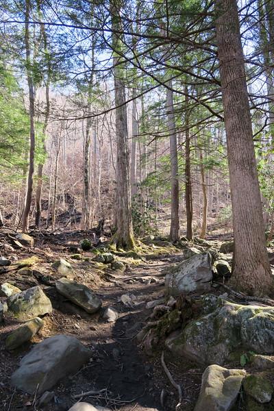 Rainbow Falls Trail -- 3,100'