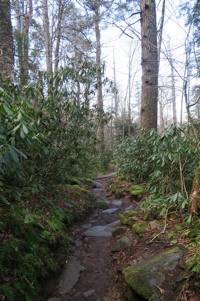 Rainbow Falls Trail -- 3,800'