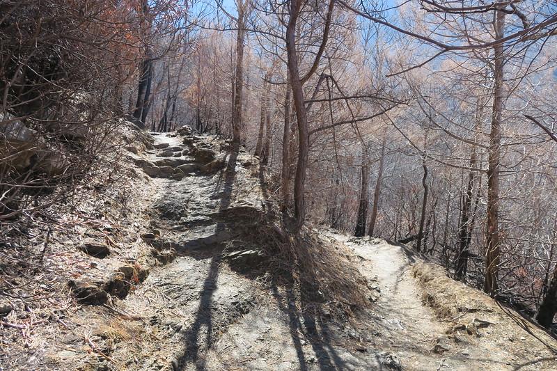 Rainbow Falls Trail -- 3,450'