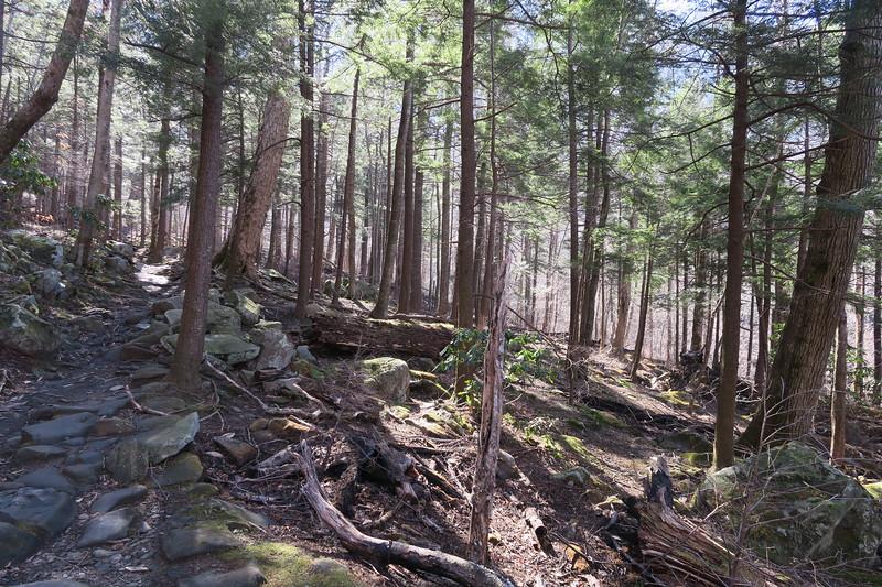 Rainbow Falls Trail -- 3,600'