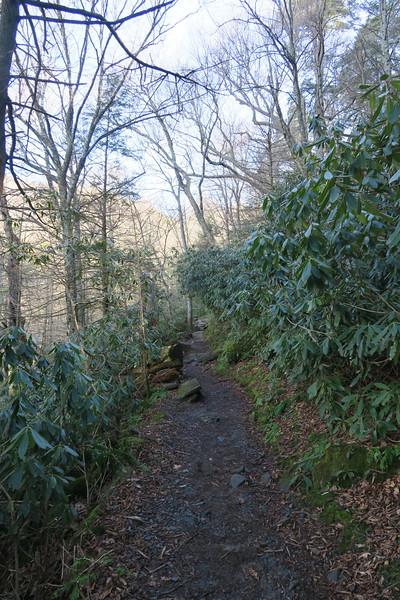 Rainbow Falls Trail -- 4,120'