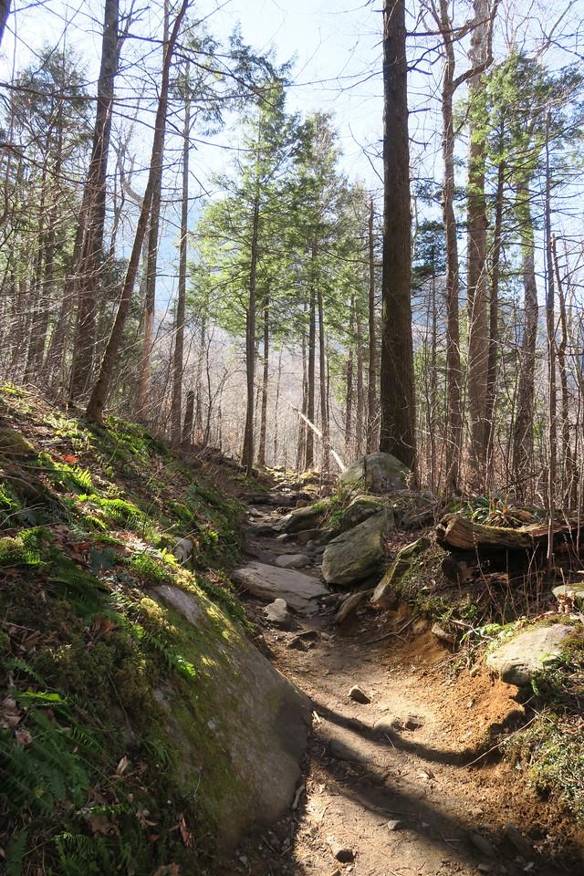 Rainbow Falls Trail -- 3,660'