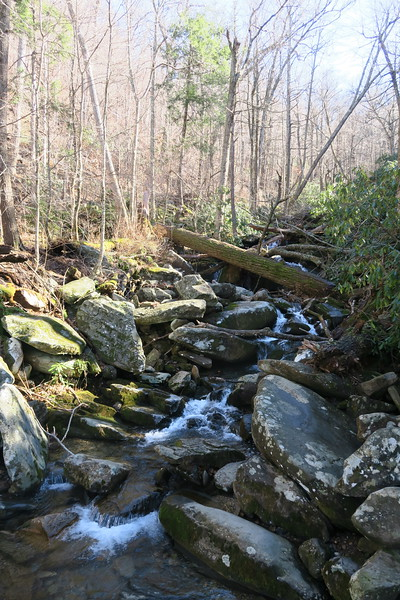 LeConte Creek -- 3,680'