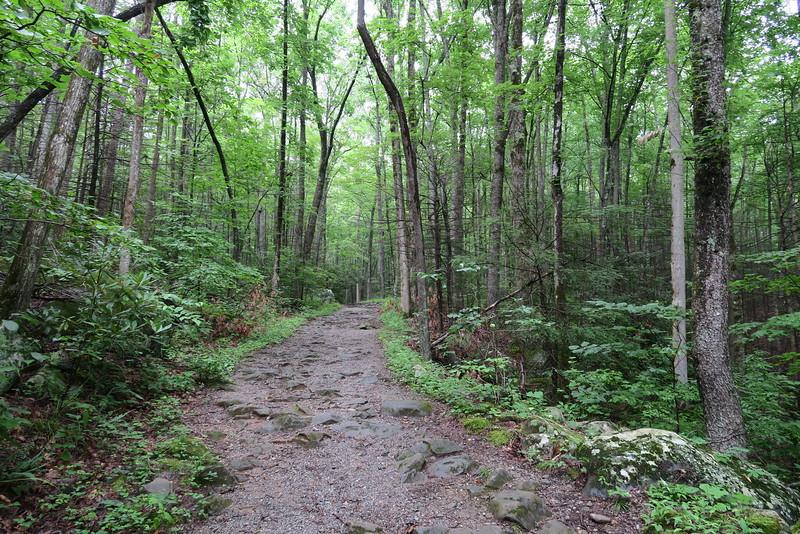 Ramsey Cascades Trail- 2,250'