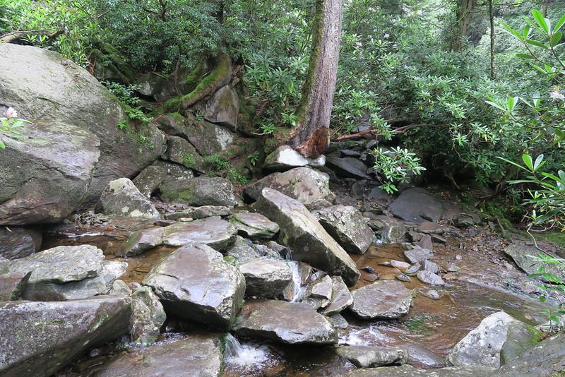 Ramsey Cascades Trail - 4,200'