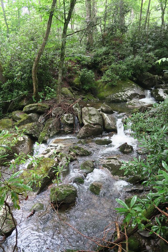 Ramsey Cascades Trail - 3,580'