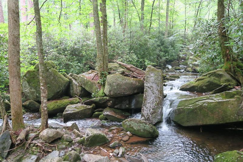 Ramsey Cascades Trail - 3,540'