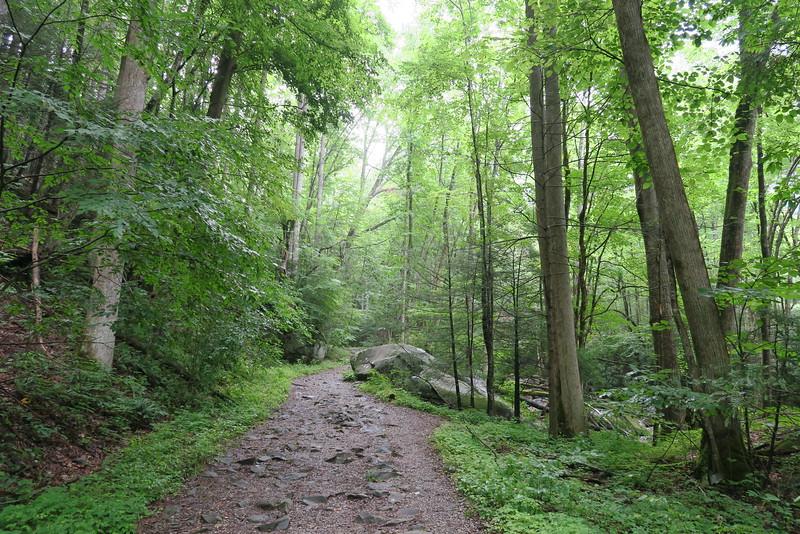Ramsey Cascades Trail - 2,150'
