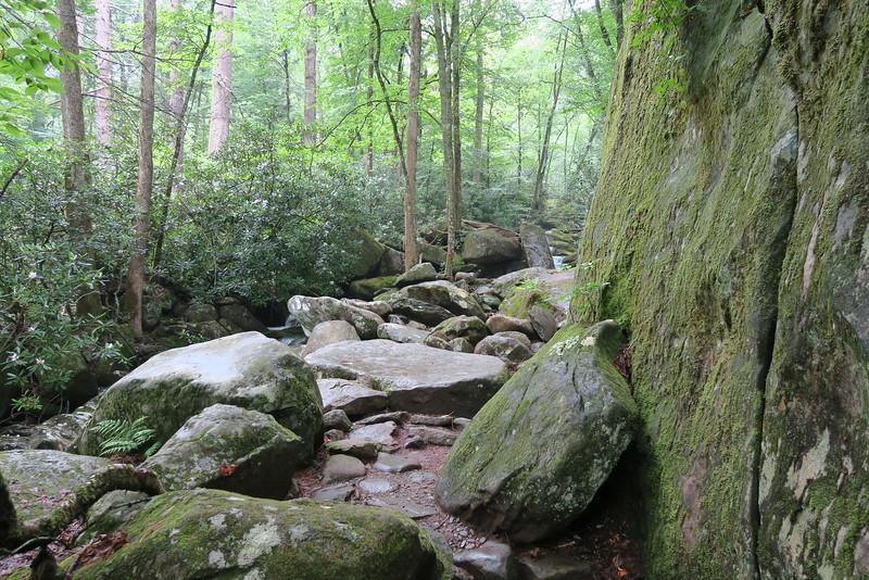 Ramsey Cascades Trail - 3,500'