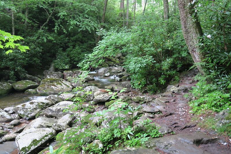 Ramsey Cascades Trail - 3,000'