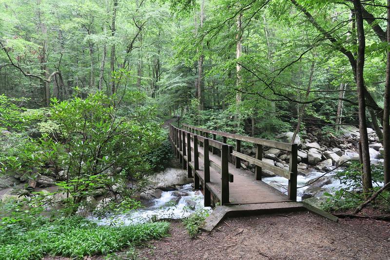 Ramsey Cascades Trail - 2,090'
