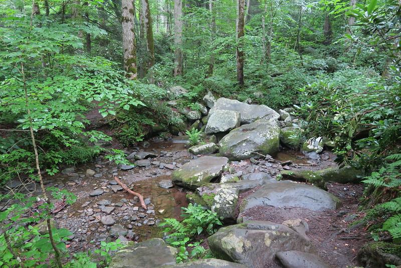 Ramsey Cascades Trail - 3,750'