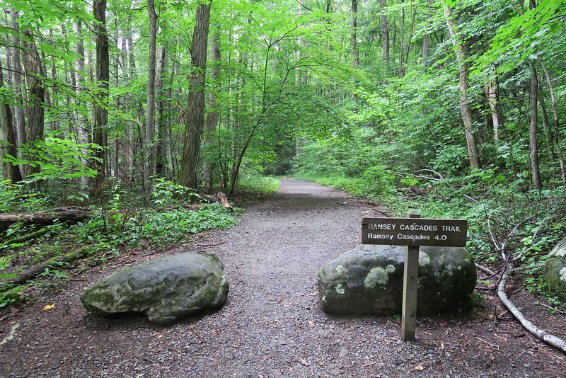 Ramsey Cascades Trail - 2,080'