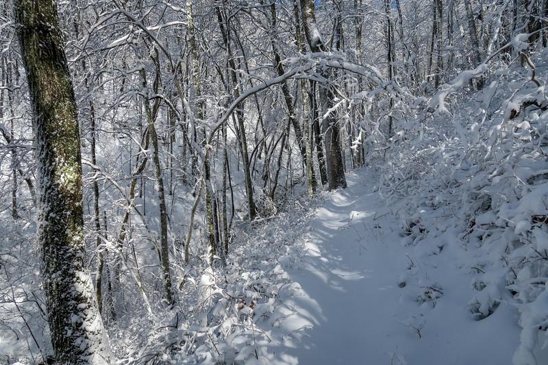Appalachian Trail -- 3,520'