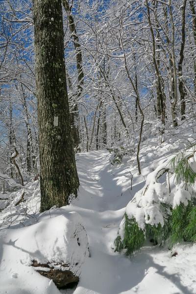 Appalachian Trail -- 3,540'