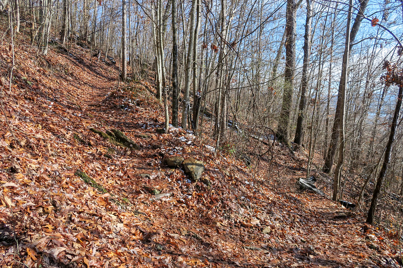 Appalachian Trail -- 2,300'