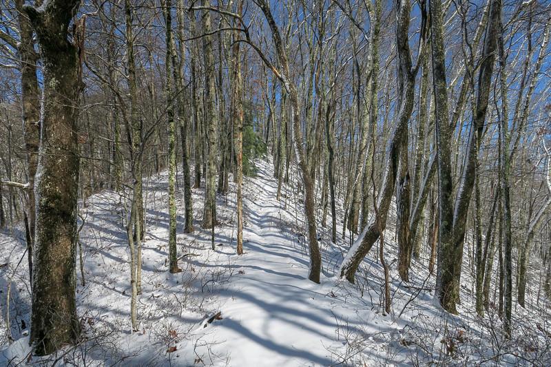 Appalachian Trail -- 3,150'