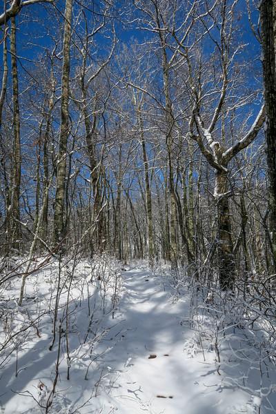 Appalachian Trail -- 3,160'