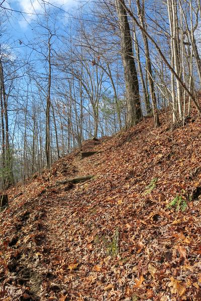 Appalachian Trail -- 2,150'