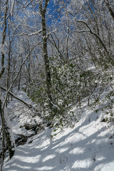 Appalachian Trail -- 3,620'