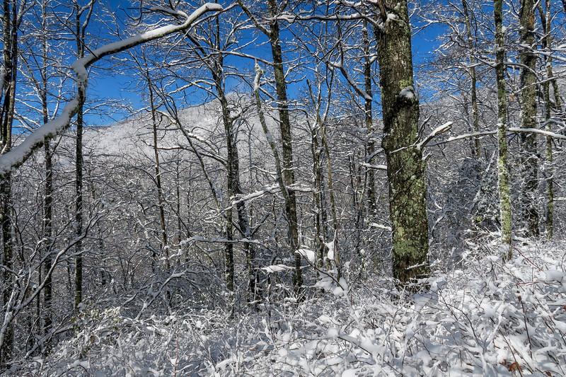 Appalachian Trail -- 3,320'