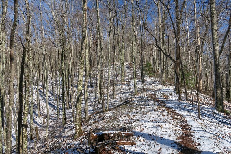Appalachian Trail -- 2,600'