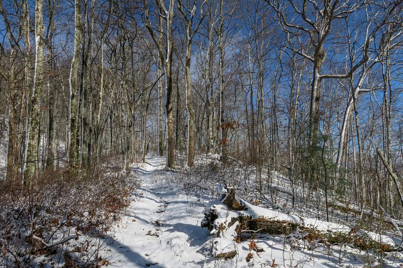Appalachian Trail -- 3,080'