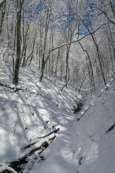 Appalachian Trail -- 3,500'