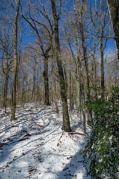 Appalachian Trail -- 2,700'