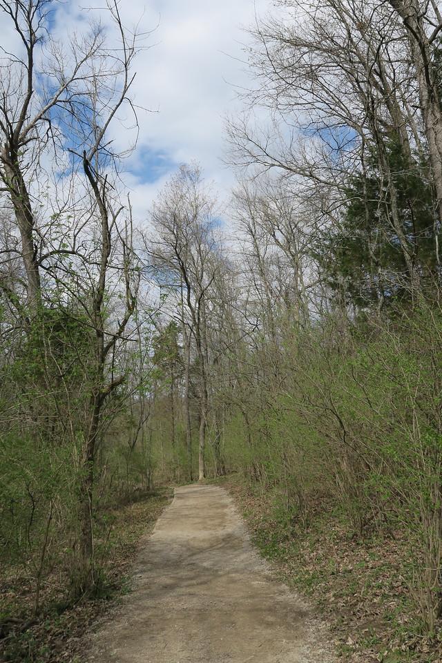 Bison Viewing Trail