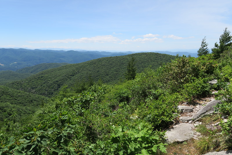 Appalachian Trail (Ridge Route) - 4,450'