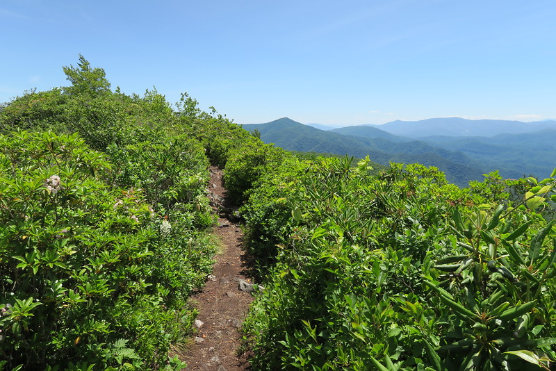 Appalachian Trail (Ridge Route) - 4,540'