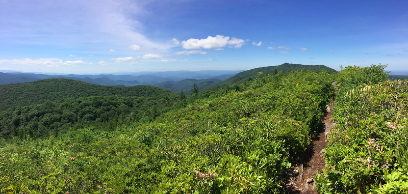 Appalachian Trail (Ridge Route) - 4,520'