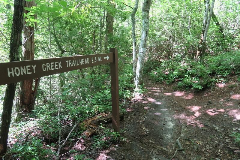 Honey Creek Loop-John Muir Trail Junction