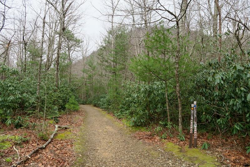 Margarette Falls-Bullen Hollow Trailhead