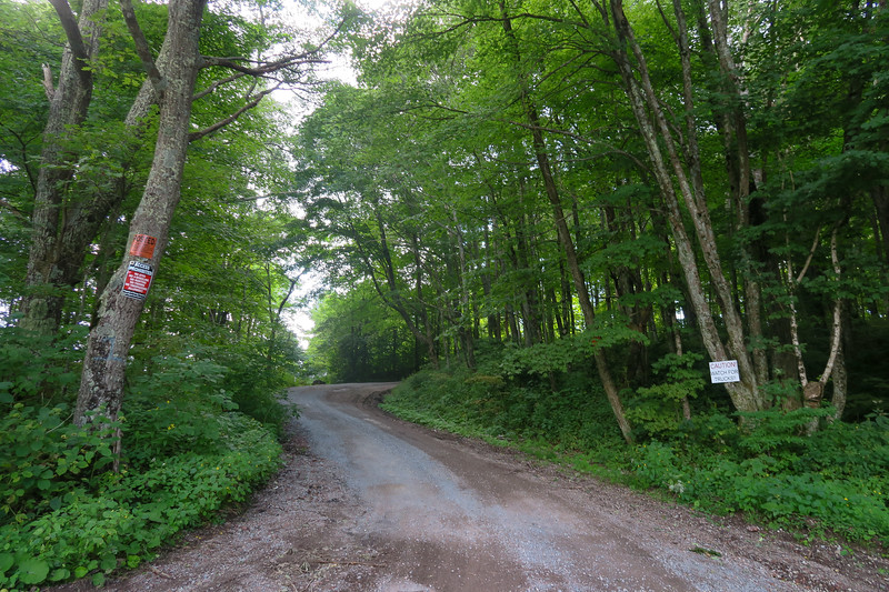 Black Mountain Ridge Road - 3,700'