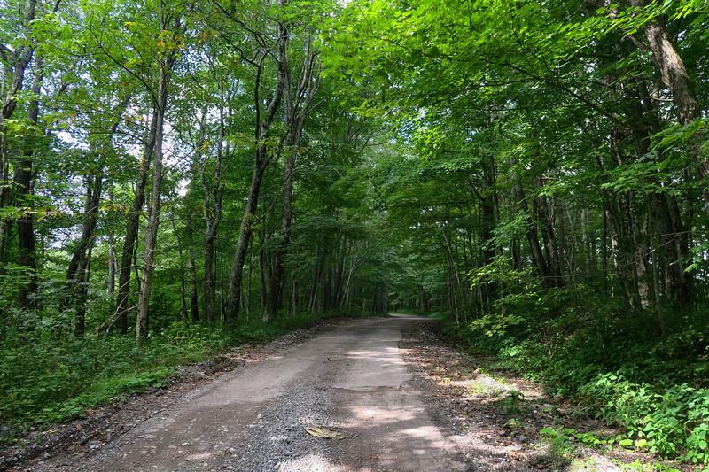 Black Mountain Ridge Road - 3,770'