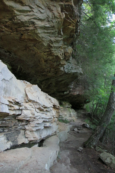 Eagle Falls Trail