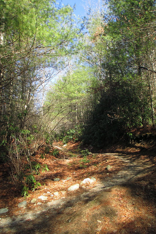 The Big Rock Trail provides the quickest route to the summit of Cedar Rock, although it doesn't loose any time heading uphill, its only about 300 vertical feet to the top so its not a real challenging climb...