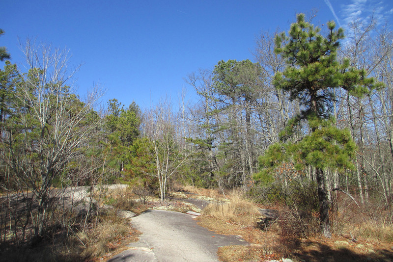 Big Rock Trail