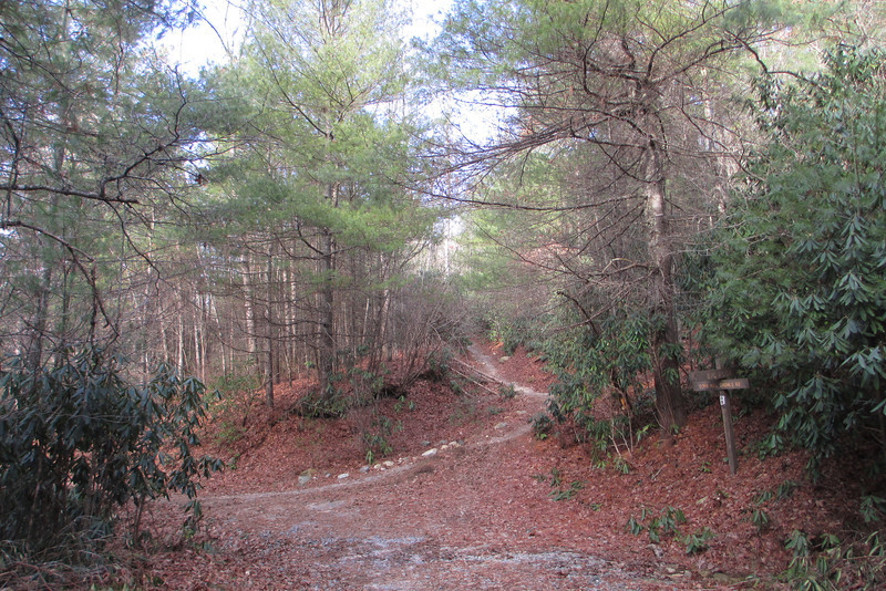 Corn Mill Shoals Road-Big Rock Trail Junction