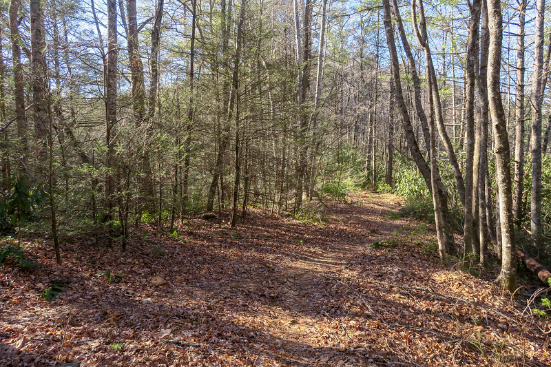Nooks Trail -- 2,720'