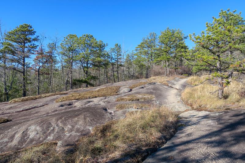 Cedar Rock Trail -- 2,960'