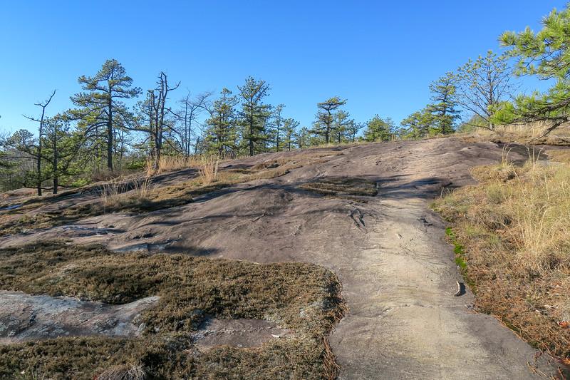 Cedar Rock Trail -- 3,000'
